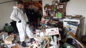 Sprzątanie po zbieraczu , po fekaliach